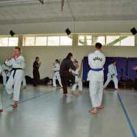 bzl-2001-3