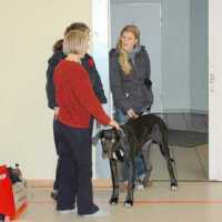arnis-cup-12-2008-34